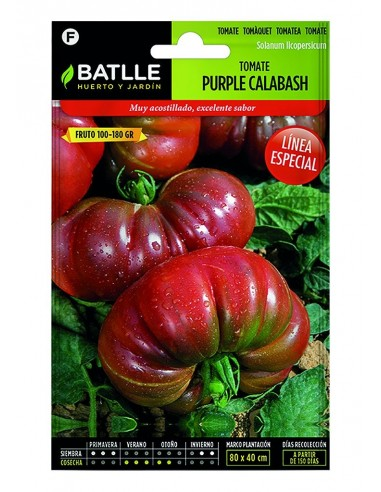 Tomate Purple Calabash En Sobres
