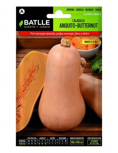 Calabaza Anquito Butternut...