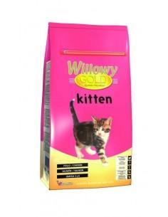 Willowy gold kitten 2Kg...